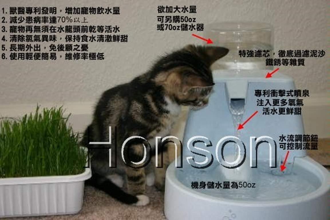 Drinkwell 電動噴泉式淨化寵物飲水器