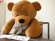 韓國BOYDS可愛泰迪熊Teddy bear 韓國BOYDS可愛泰迪熊Teddy bear 結婚